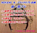 Minami_2012_01